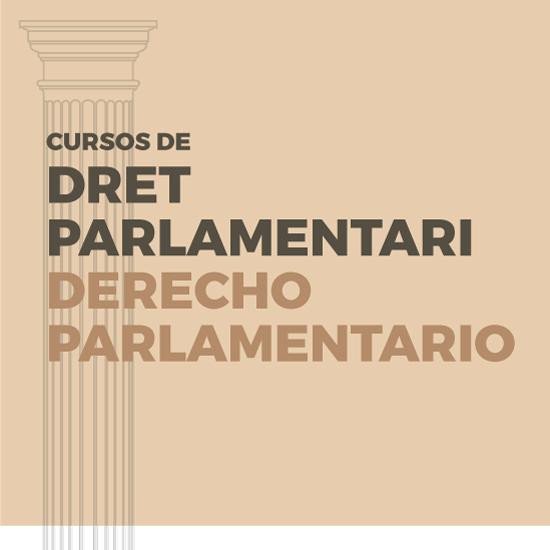 Corts Valencianes, cursos de dret parlamentari, poster, Mafreino
